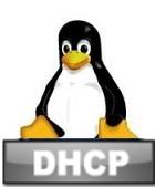 dhcp-linux-ovewrite-dns-ubuntu-debian-logo