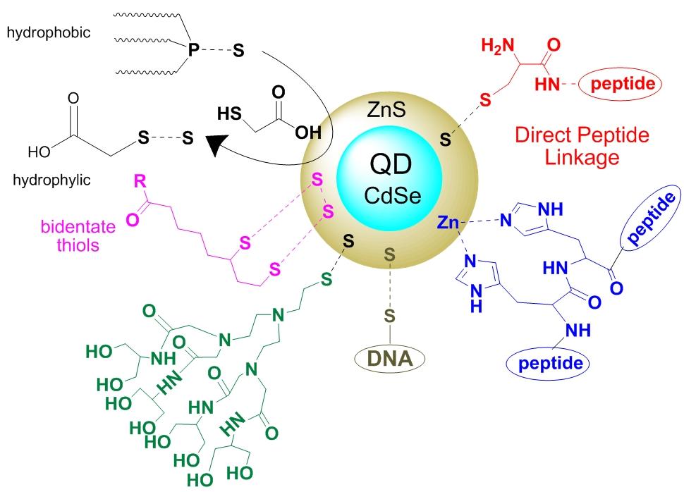 Quantum_dots_CPP